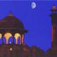 Libro Viaggio nell'India del nord
