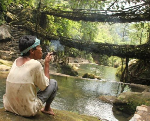 straordinari ponti naturali di radici di Cherrapunjee