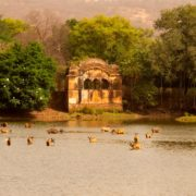 Viaggio Rajasthan e Ranthambore