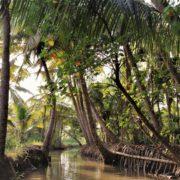 Viaggio di 7 giorni in Kerala