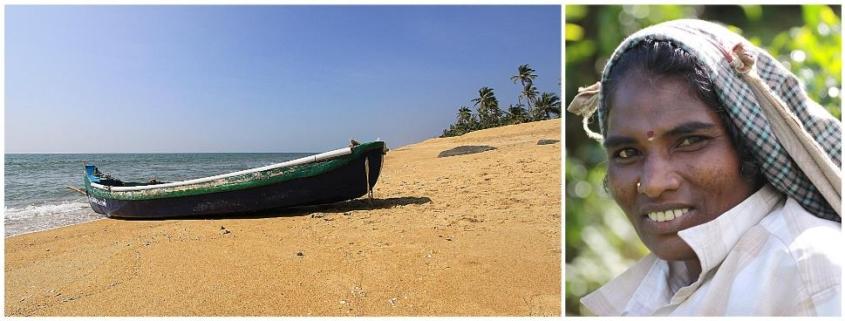 Viaggio 7 giorni in Kerala